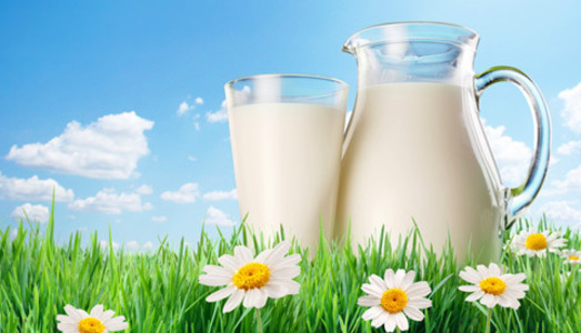 Physio Med Delivers: Reduced Sickness Absence to Dairy Crest